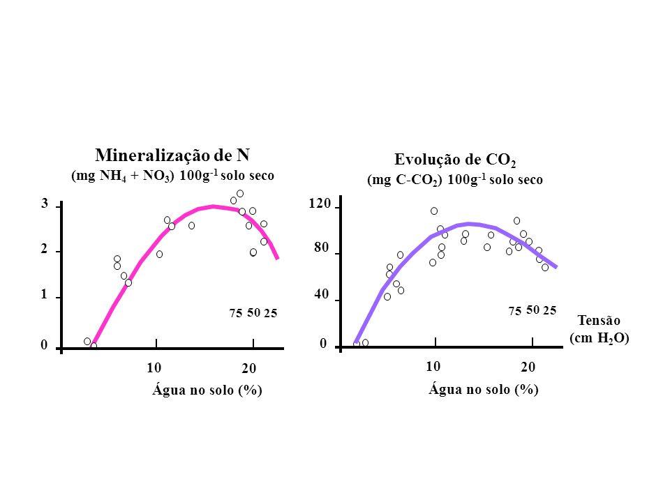 Mineralização de N Evolução de CO2 3 1 2 Água no solo (%) 10 20 120 40