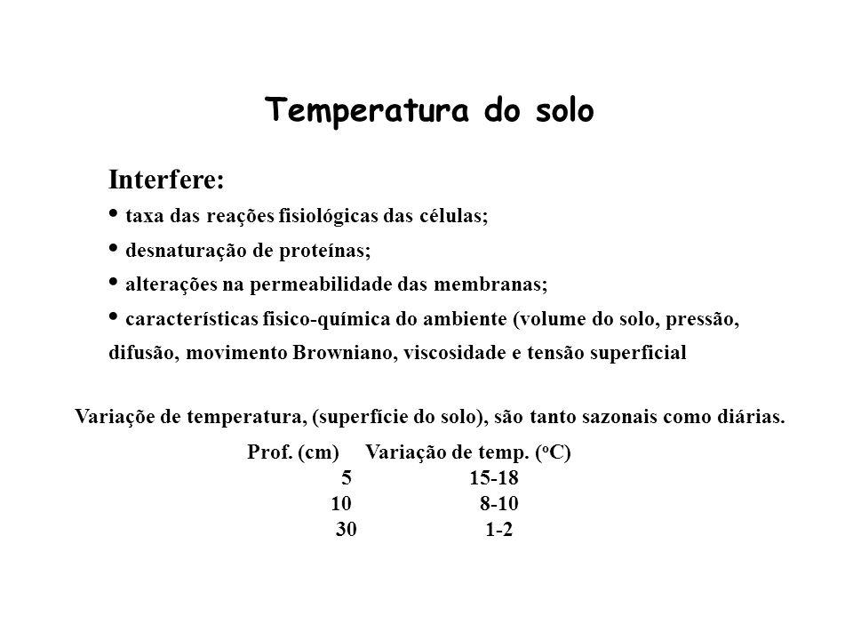Prof. (cm) Variação de temp. (oC)