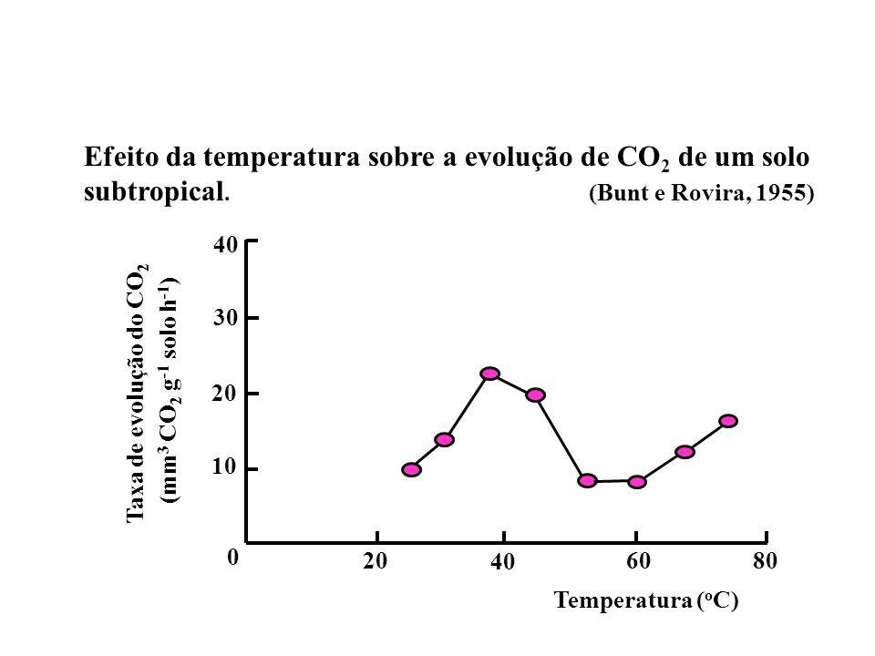 Efeito da temperatura sobre a evolução de CO2 de um solo