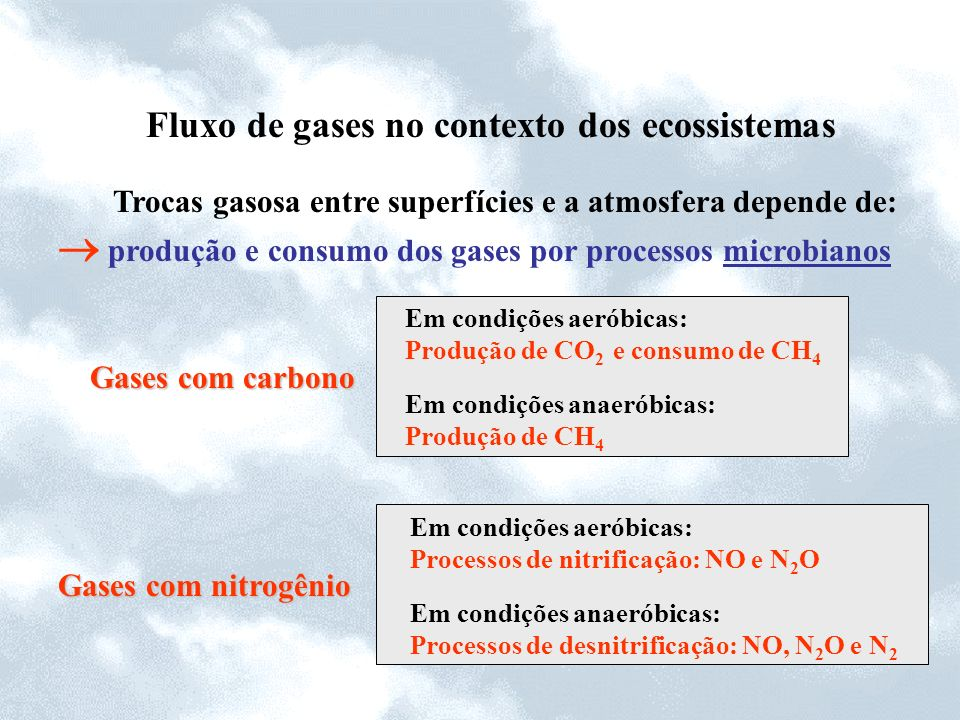  produção e consumo dos gases por processos microbianos