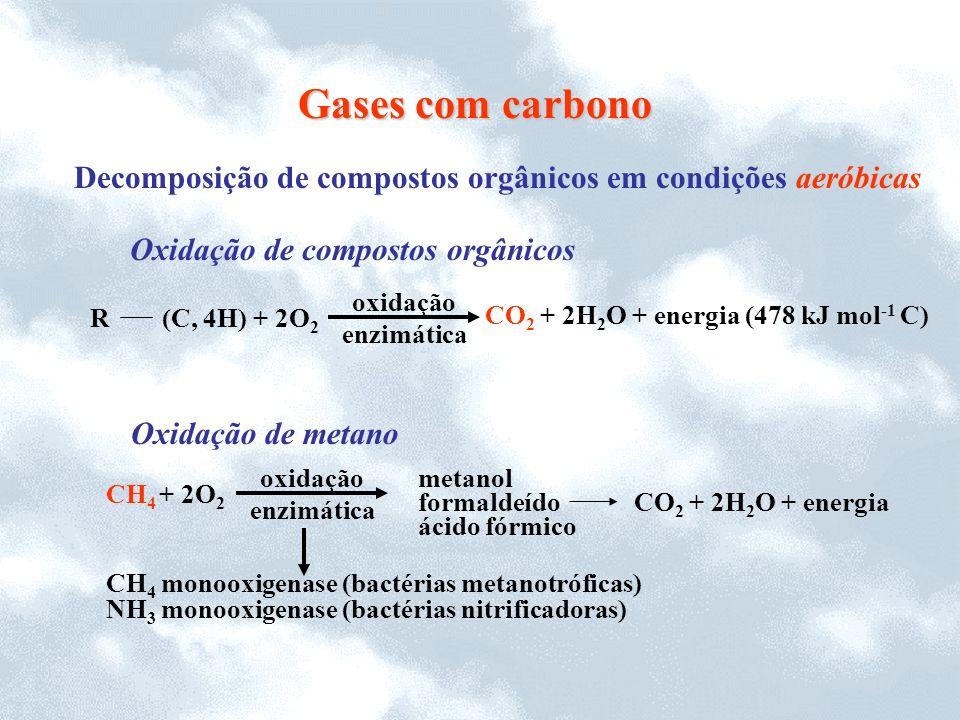 Gases com carbono Decomposição de compostos orgânicos em condições aeróbicas. CO2 + 2H2O + energia (478 kJ mol-1 C)
