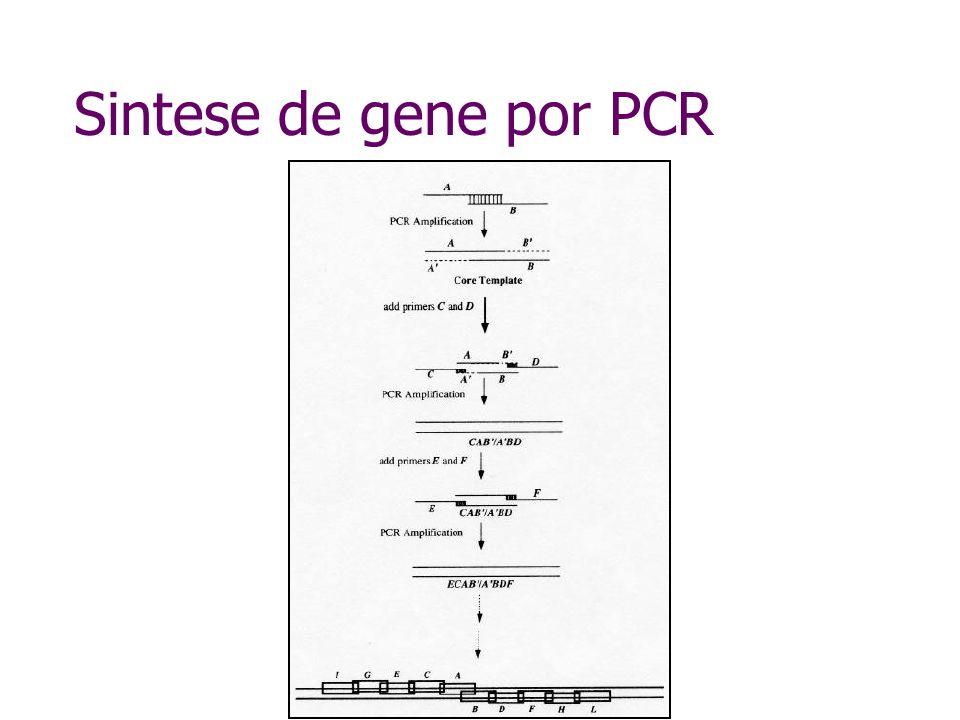 Sintese de gene por PCR