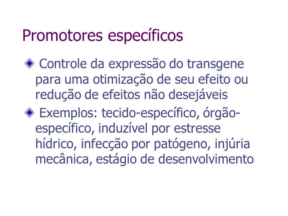 Promotores específicos