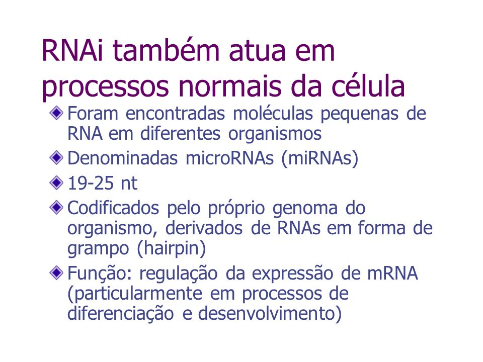 RNAi também atua em processos normais da célula