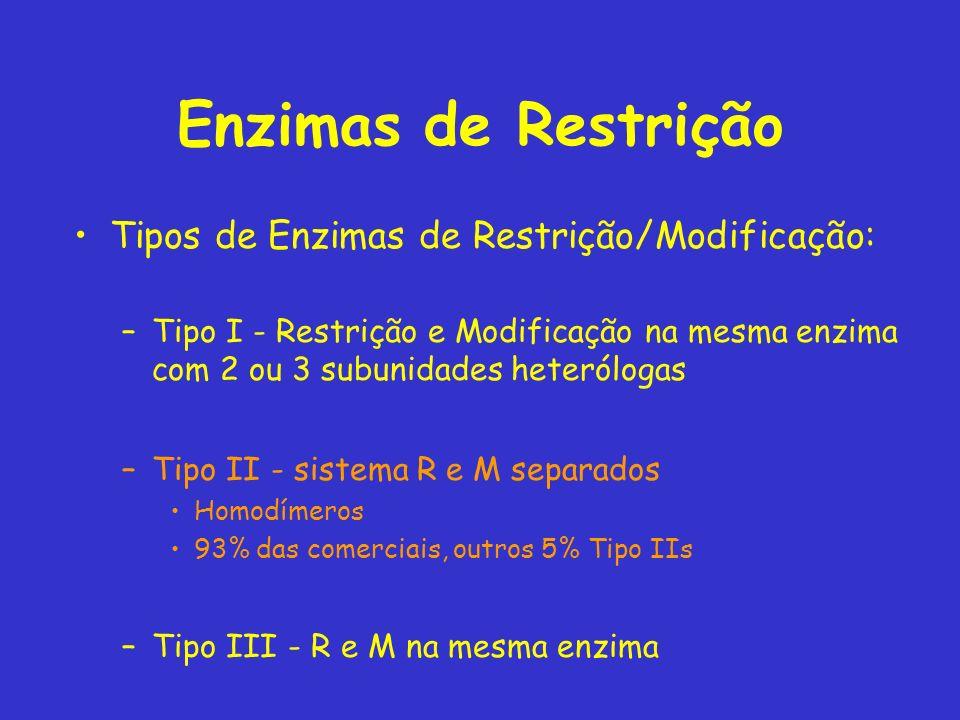 Enzimas de Restrição Tipos de Enzimas de Restrição/Modificação: