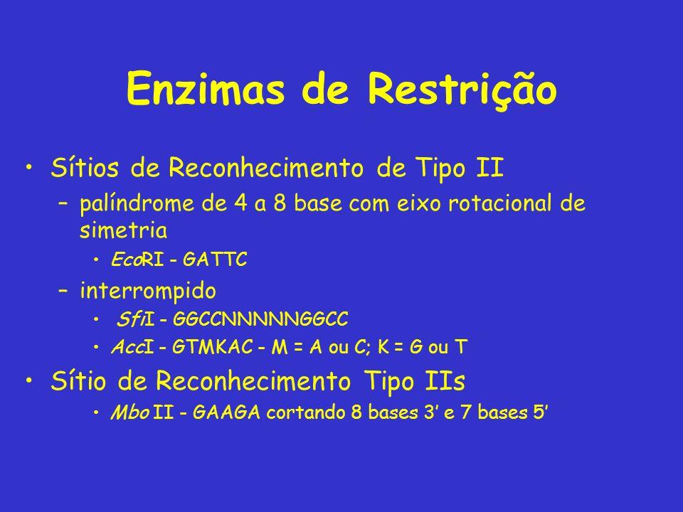 Enzimas de Restrição Sítios de Reconhecimento de Tipo II