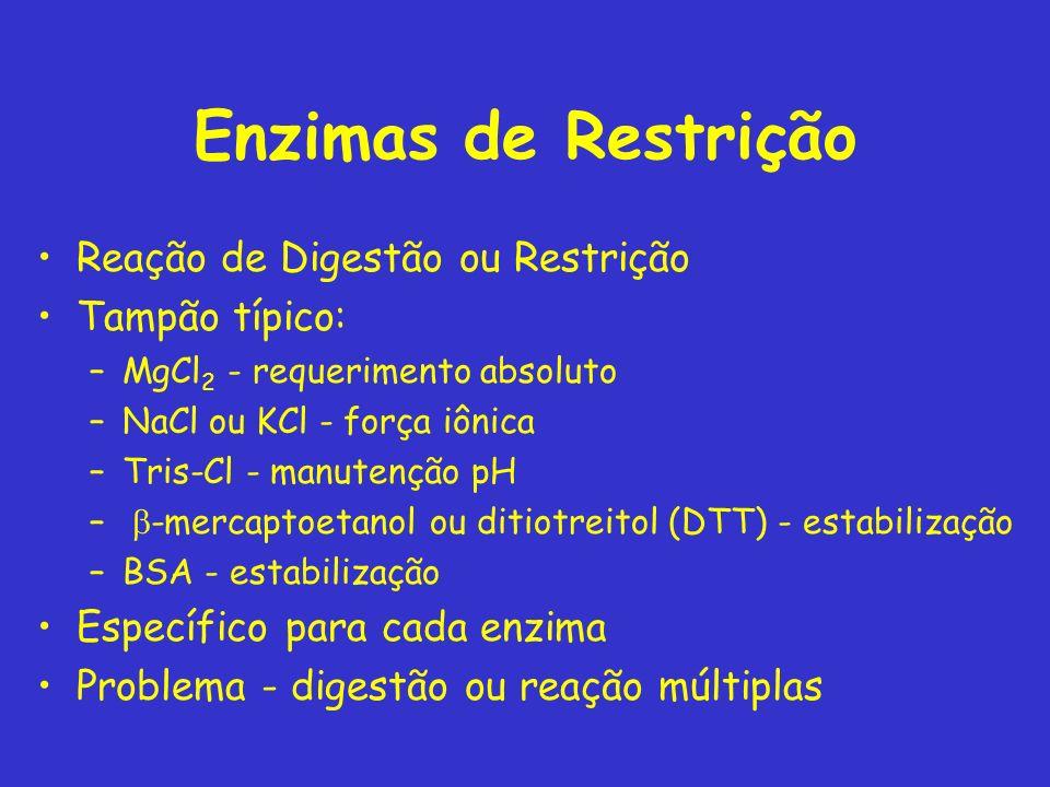 Enzimas de Restrição Reação de Digestão ou Restrição Tampão típico: