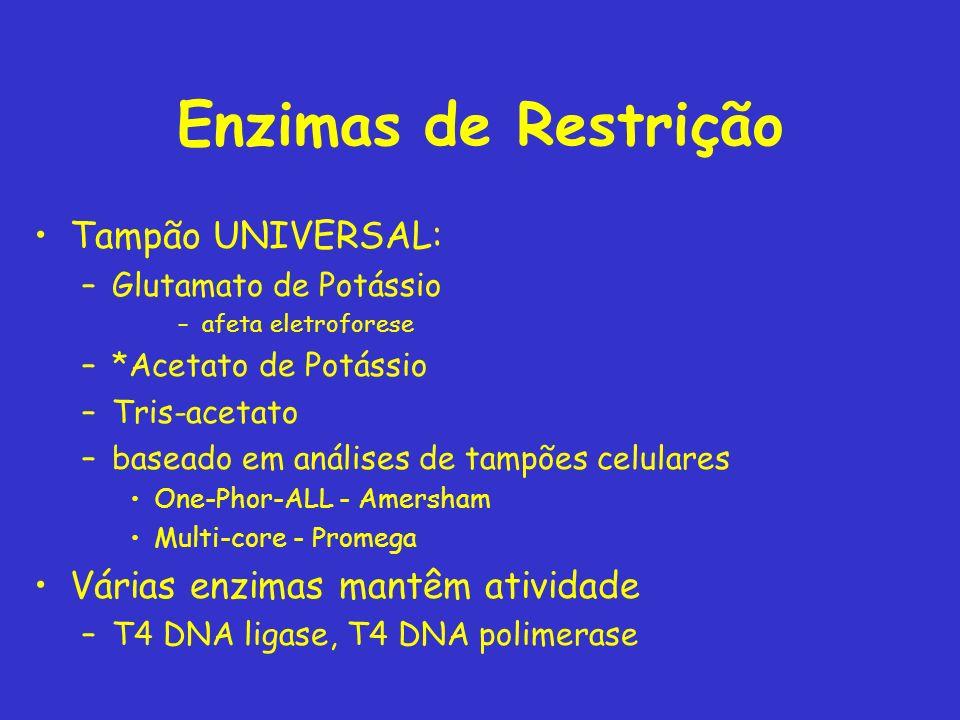 Enzimas de Restrição Tampão UNIVERSAL: Várias enzimas mantêm atividade