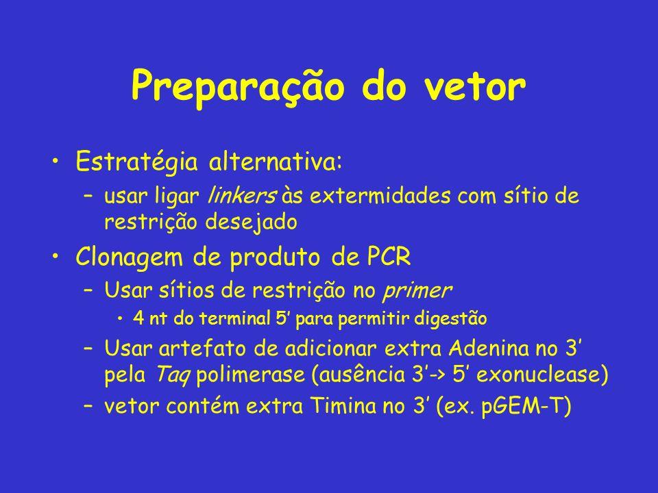 Preparação do vetor Estratégia alternativa: Clonagem de produto de PCR