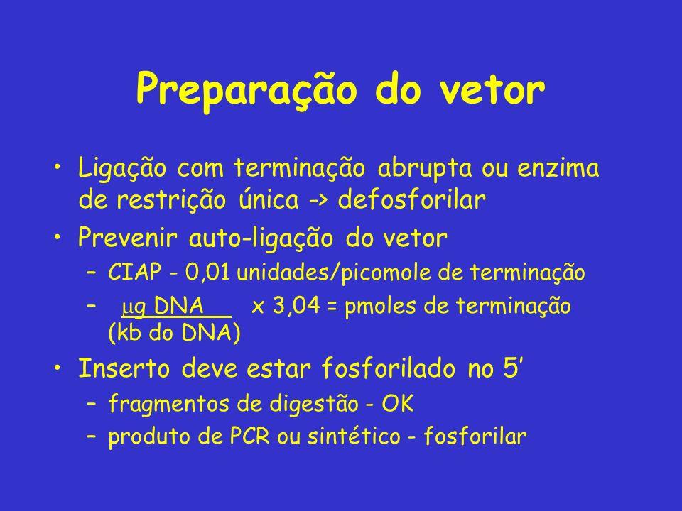 Preparação do vetor Ligação com terminação abrupta ou enzima de restrição única -> defosforilar. Prevenir auto-ligação do vetor.