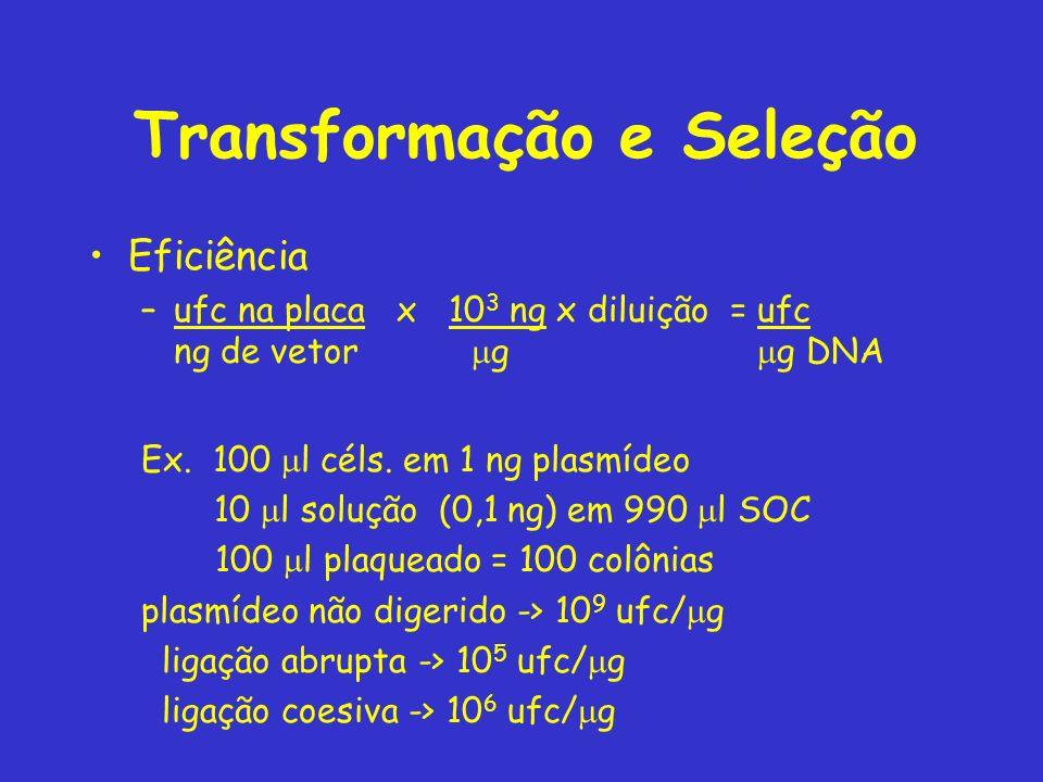 Transformação e Seleção