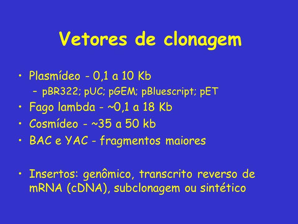 Vetores de clonagem Plasmídeo - 0,1 a 10 Kb Fago lambda - ~0,1 a 18 Kb