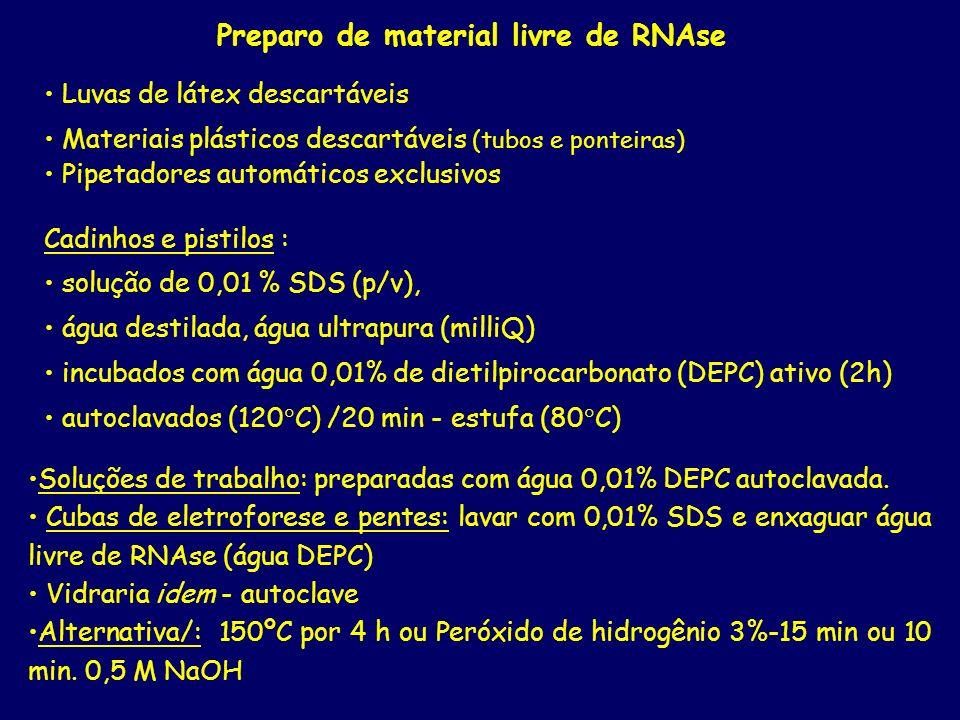 Preparo de material livre de RNAse