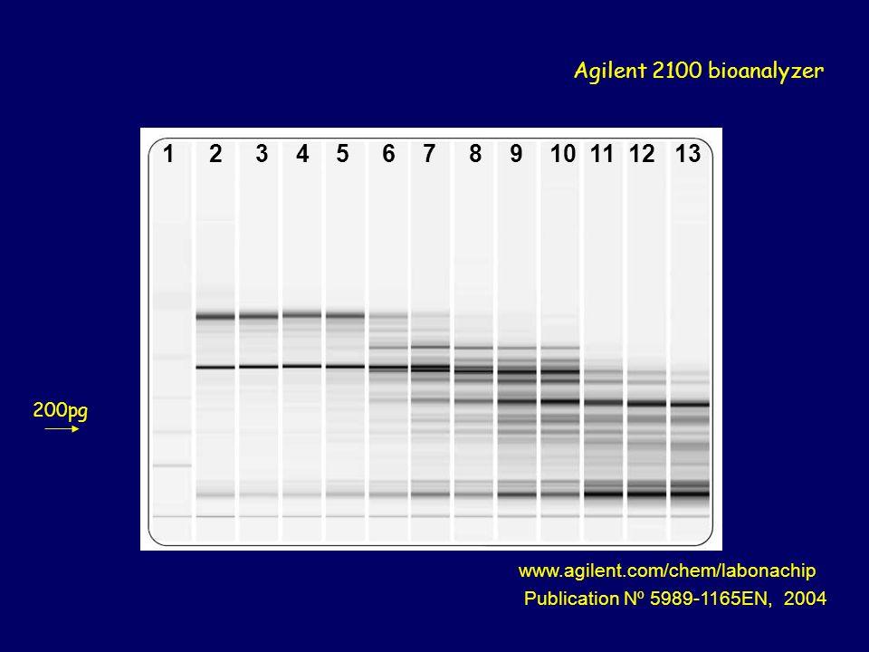 1 2 3 4 5 6 7 8 9 10 11 12 13 Agilent 2100 bioanalyzer 200pg