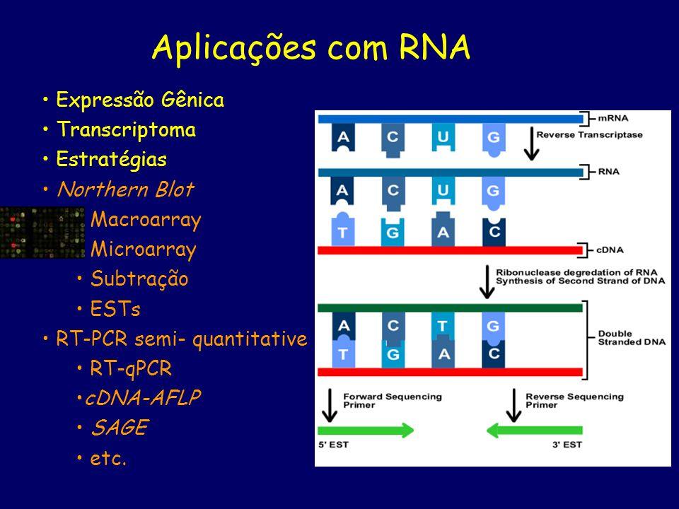 Aplicações com RNA Expressão Gênica Transcriptoma Estratégias