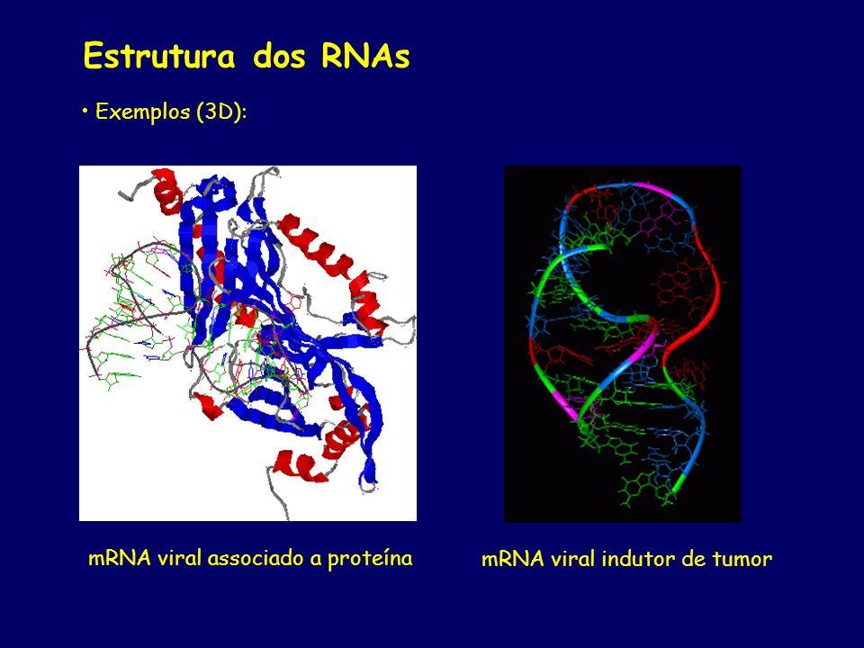 Estrutura dos RNAs Exemplos (3D): mRNA viral associado a proteína