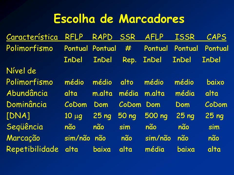 Escolha de Marcadores Característica RFLP RAPD SSR AFLP ISSR CAPS