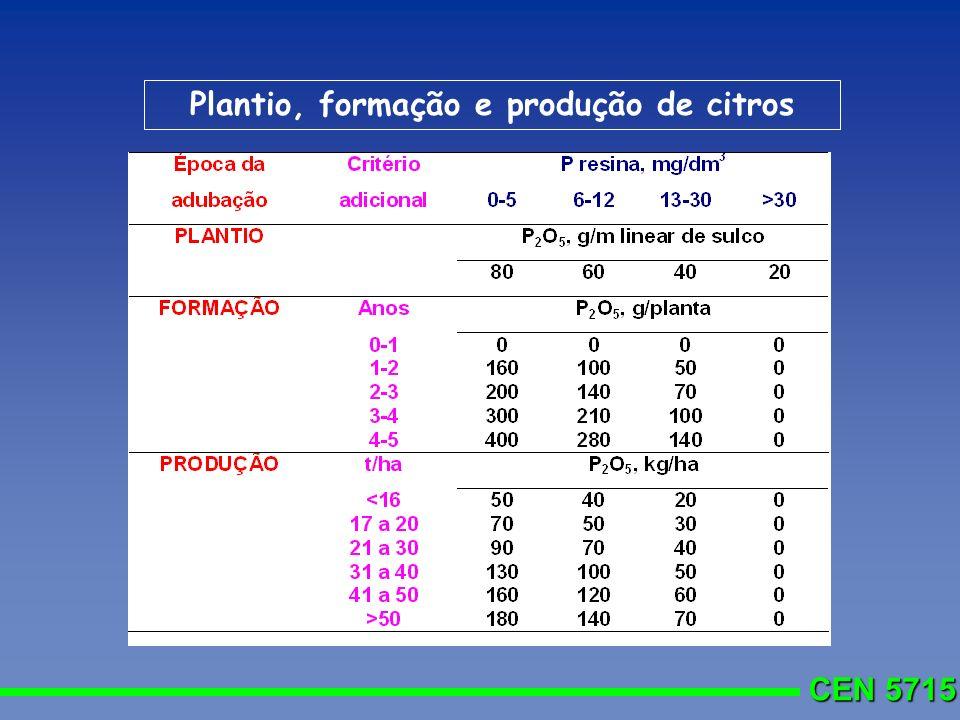 Plantio, formação e produção de citros