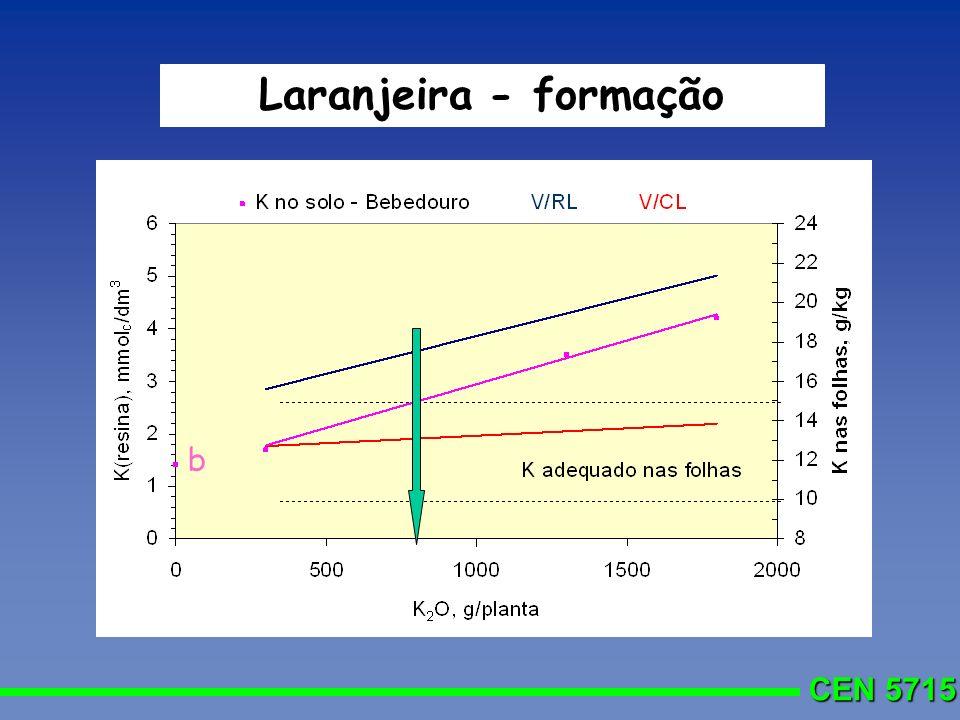 Laranjeira - formação b