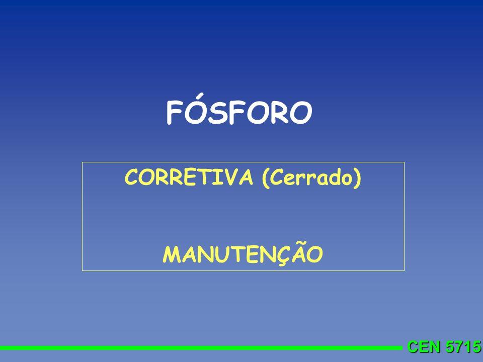 FÓSFORO CORRETIVA (Cerrado) MANUTENÇÃO