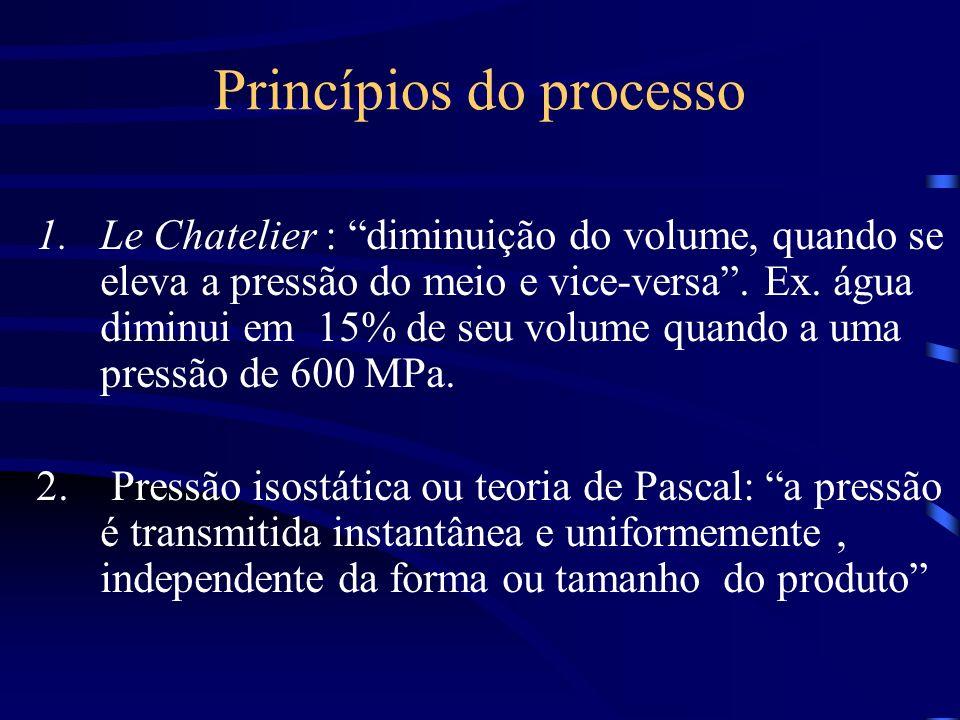 Princípios do processo