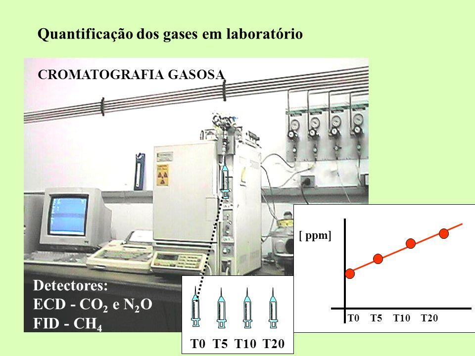 Quantificação dos gases em laboratório