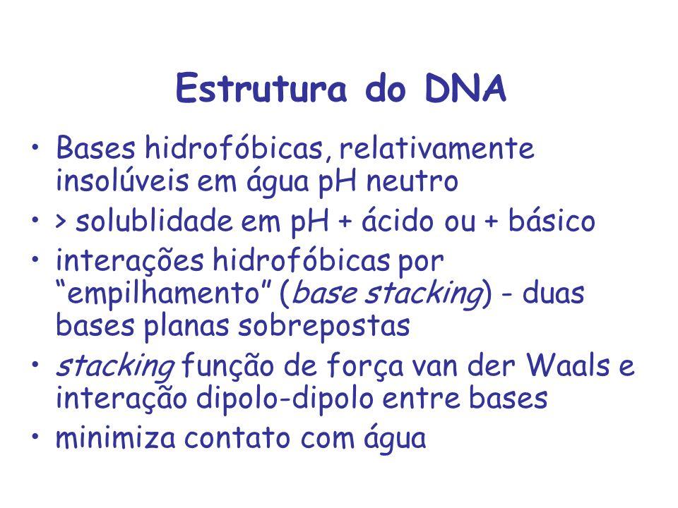 Estrutura do DNA Bases hidrofóbicas, relativamente insolúveis em água pH neutro. > solublidade em pH + ácido ou + básico.