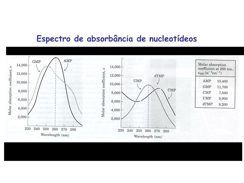Espectro de absorbância de nucleotídeos