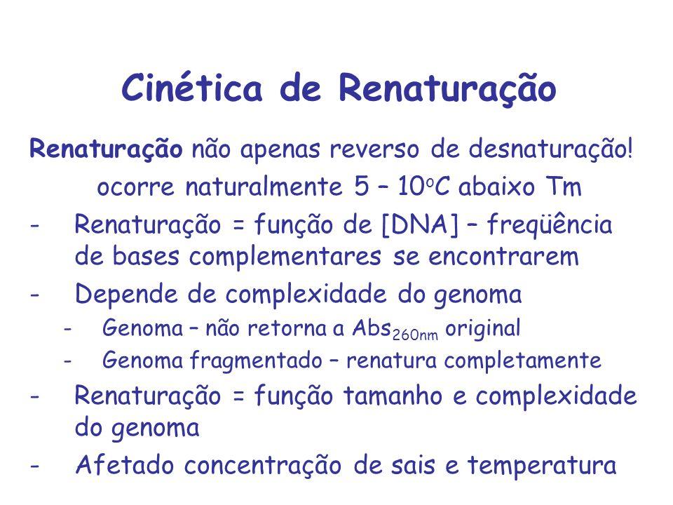 Cinética de Renaturação