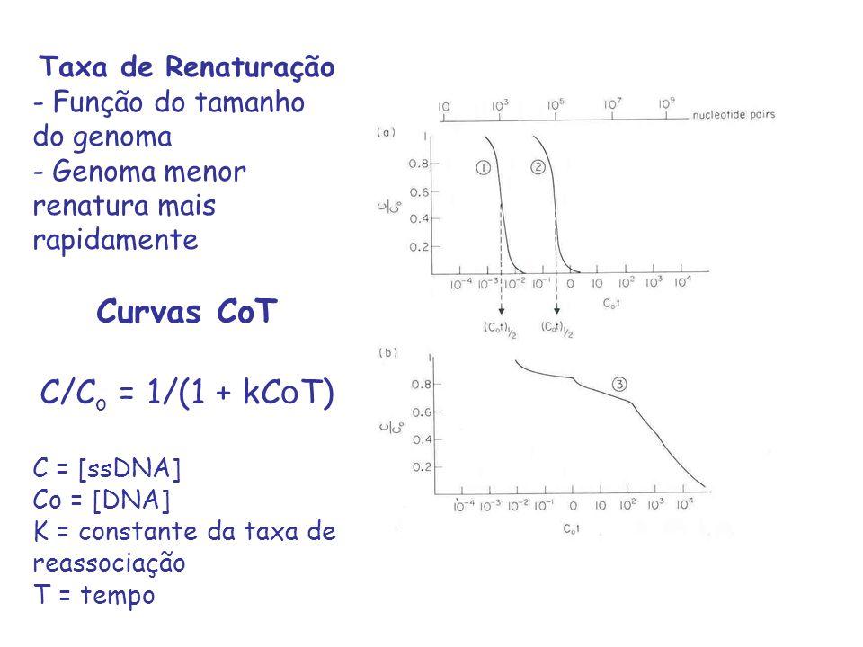 Curvas CoT C/Co = 1/(1 + kCoT) Taxa de Renaturação