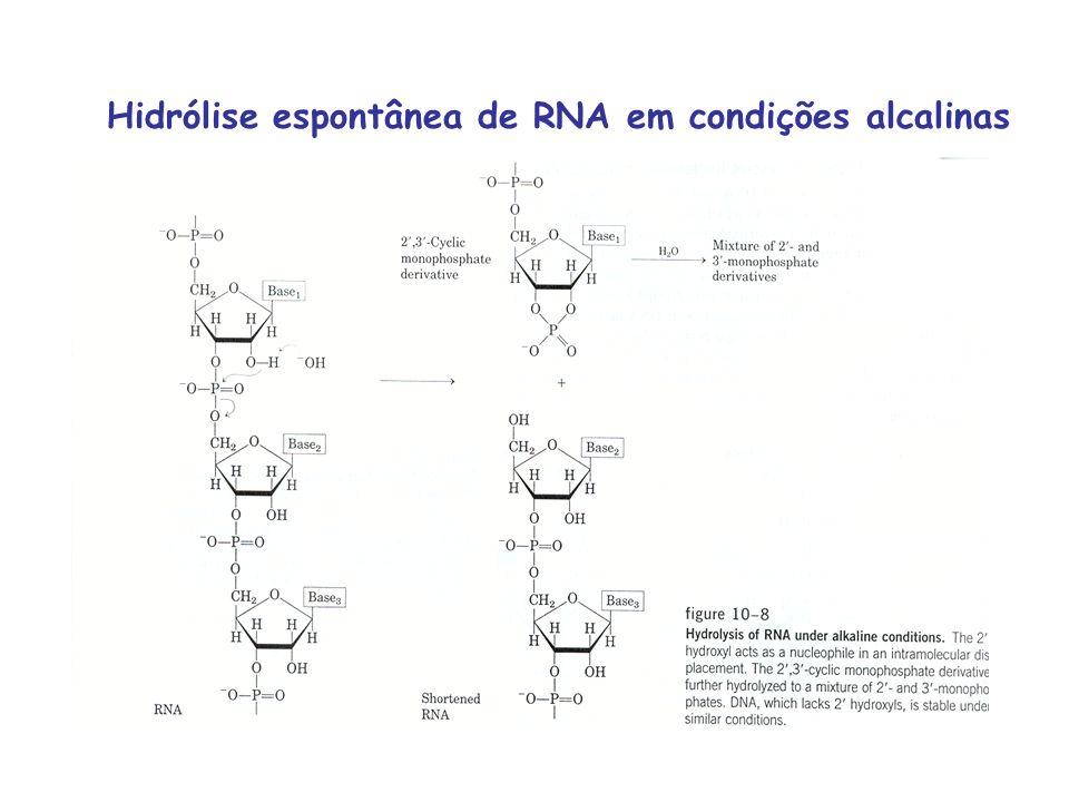 Hidrólise espontânea de RNA em condições alcalinas