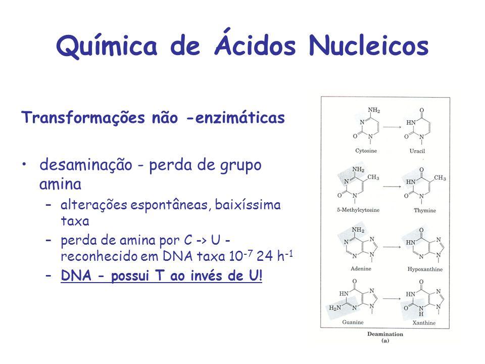Química de Ácidos Nucleicos