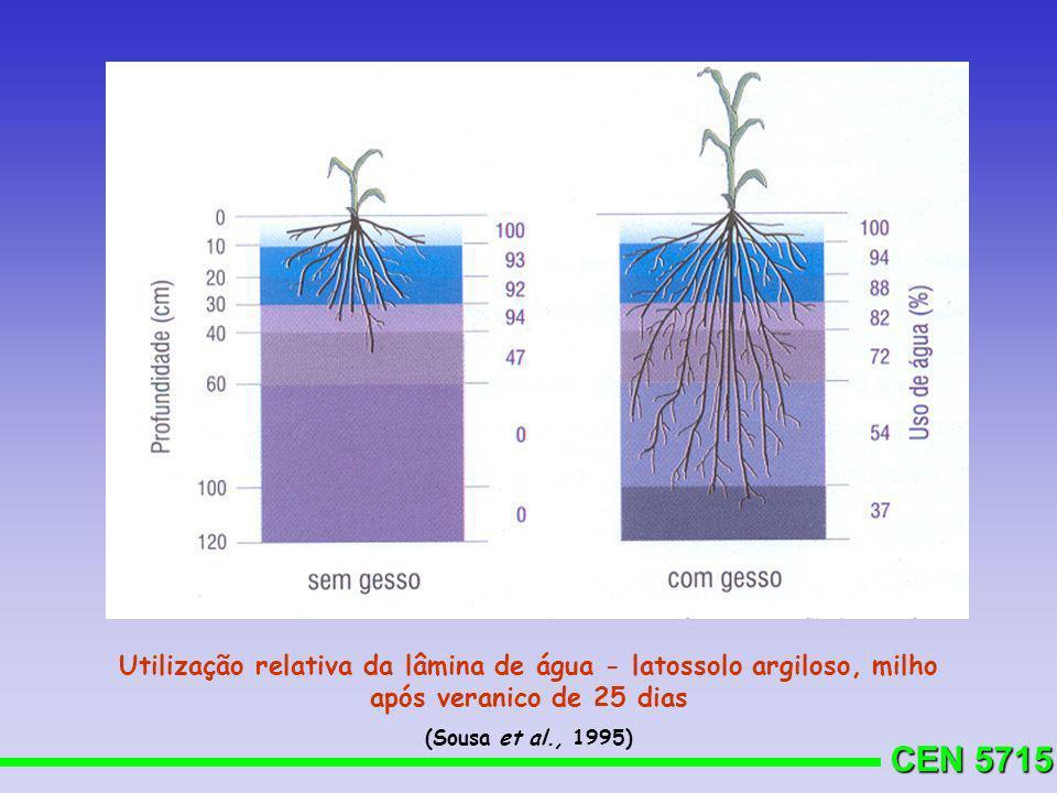 Utilização relativa da lâmina de água - latossolo argiloso, milho após veranico de 25 dias