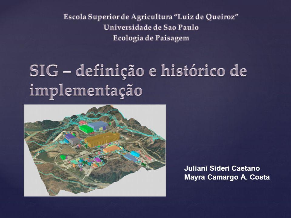 SIG – definição e histórico de implementação