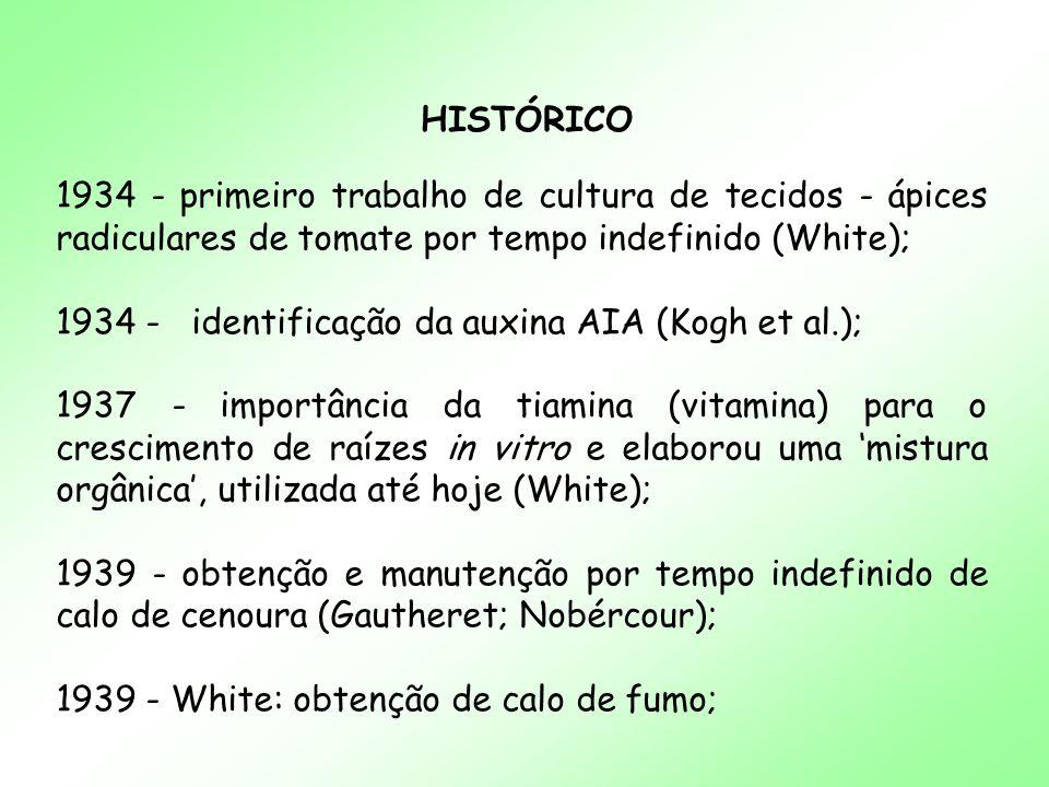 HISTÓRICO 1934 - primeiro trabalho de cultura de tecidos - ápices radiculares de tomate por tempo indefinido (White);