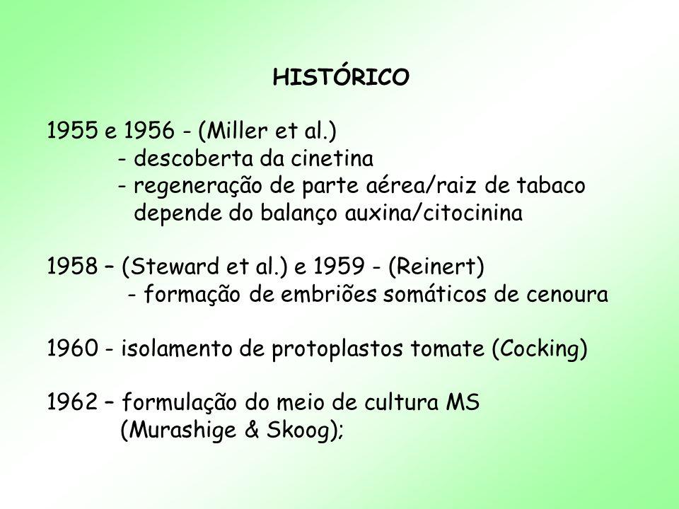 HISTÓRICO 1955 e 1956 - (Miller et al.) - descoberta da cinetina. - regeneração de parte aérea/raiz de tabaco.