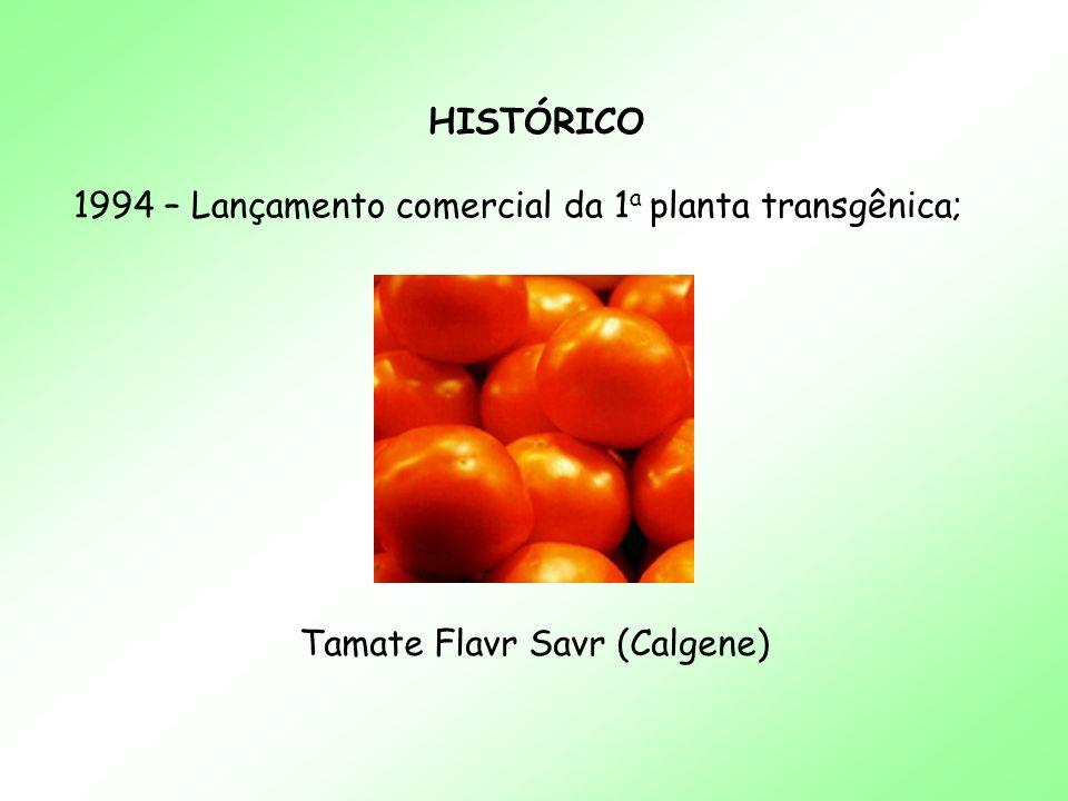 Tamate Flavr Savr (Calgene)