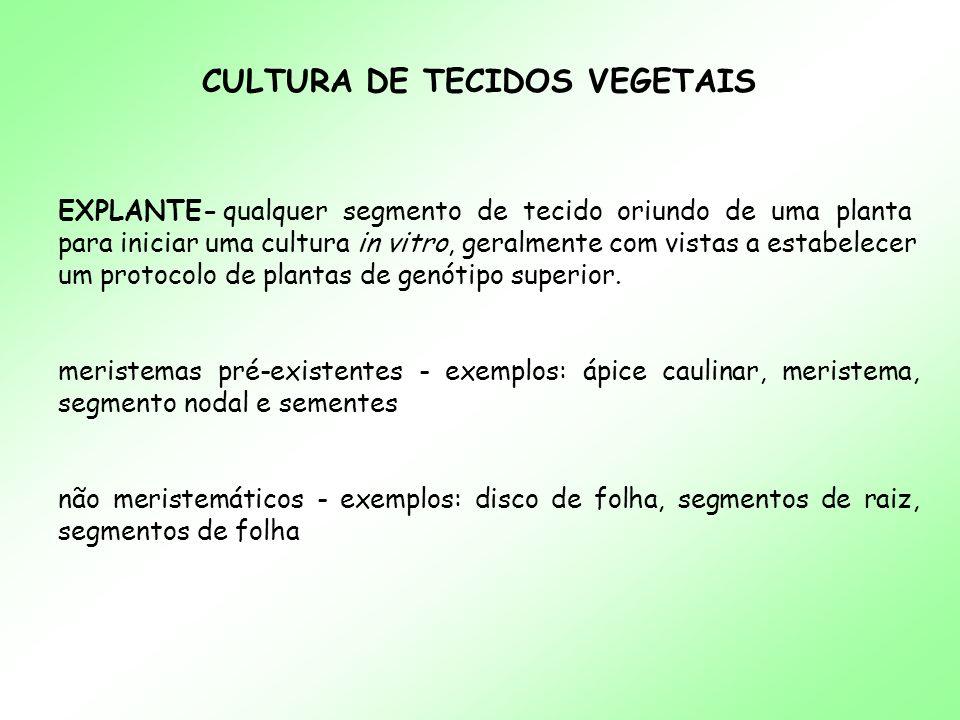 CULTURA DE TECIDOS VEGETAIS