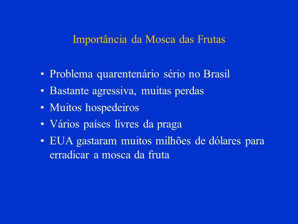 Importância da Mosca das Frutas
