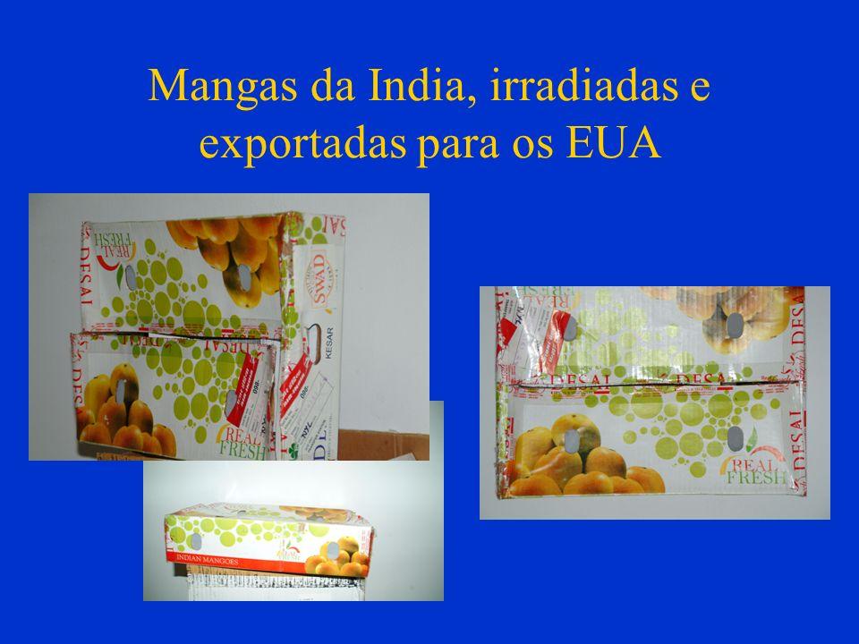 Mangas da India, irradiadas e exportadas para os EUA