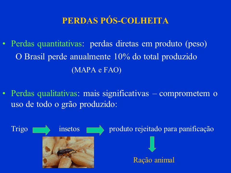 Perdas quantitativas: perdas diretas em produto (peso)