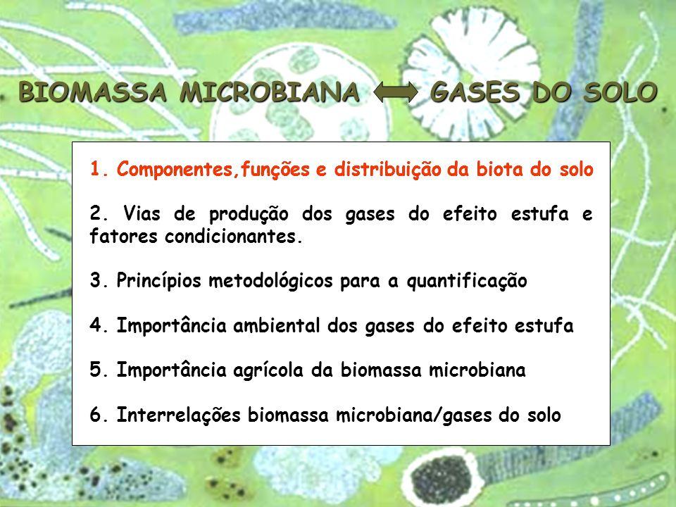 BIOMASSA MICROBIANA GASES DO SOLO