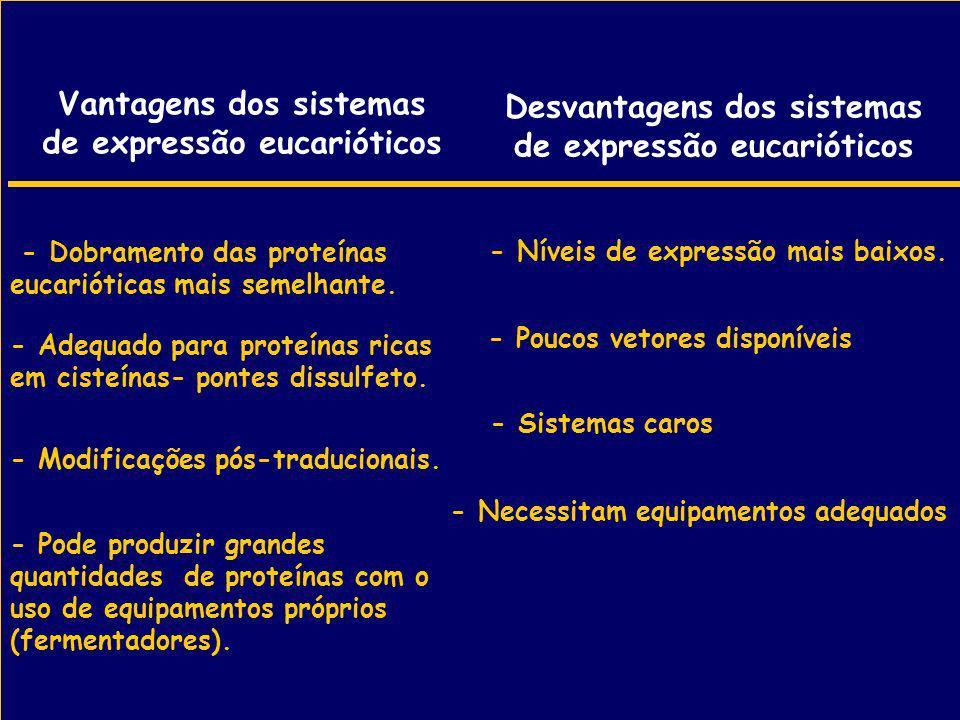 Vantagens dos sistemas de expressão eucarióticos