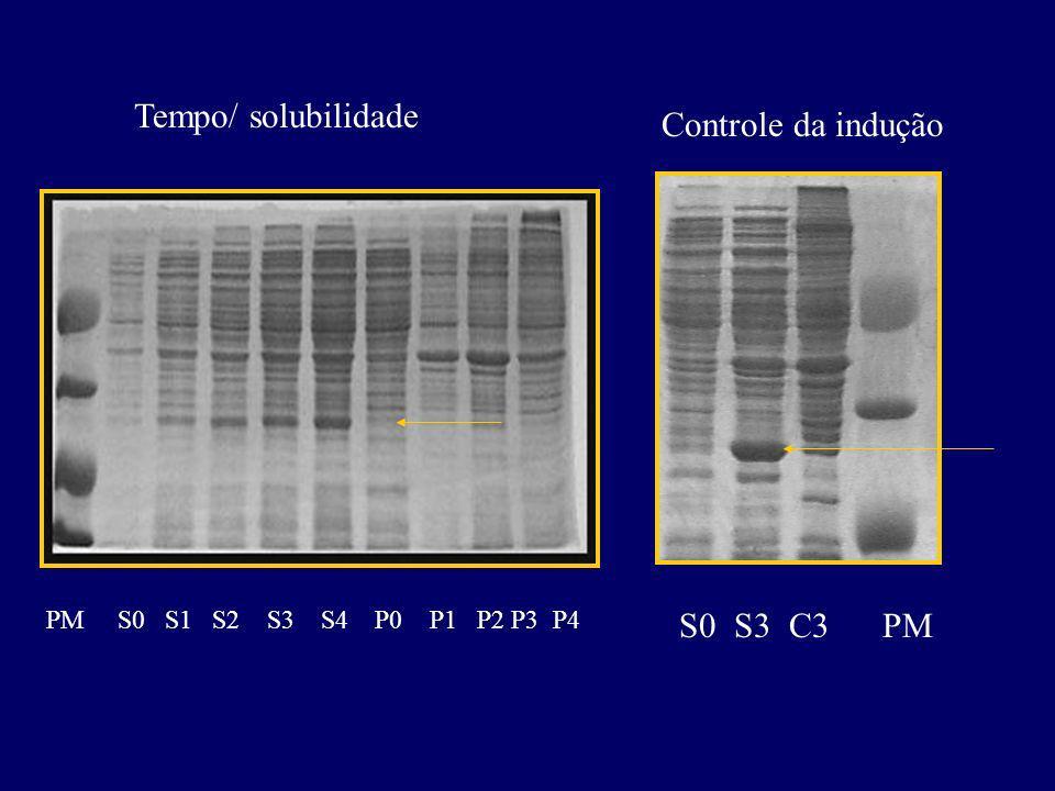 Tempo/ solubilidade Controle da indução S0 S3 C3 PM