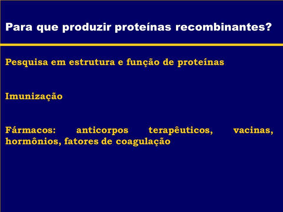 Para que produzir proteínas recombinantes