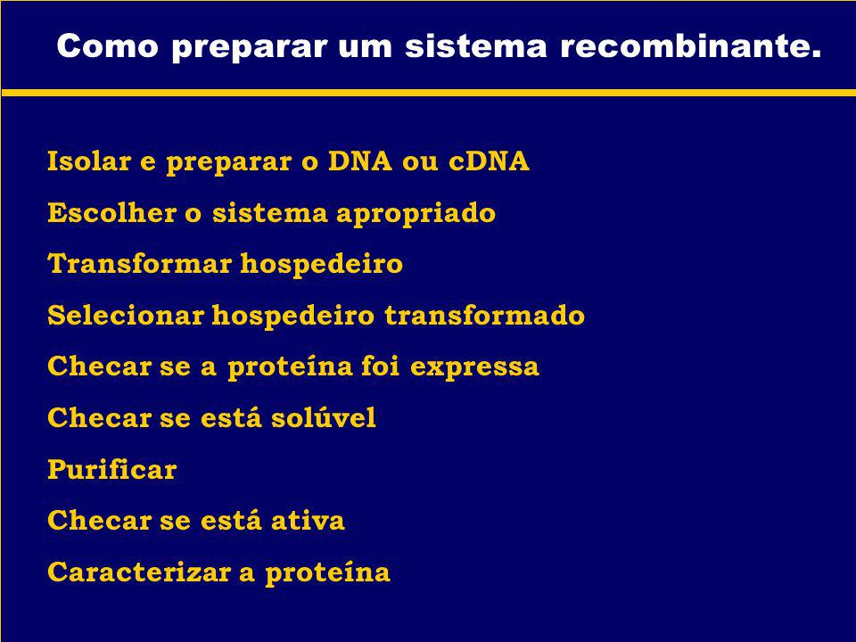 Como preparar um sistema recombinante.