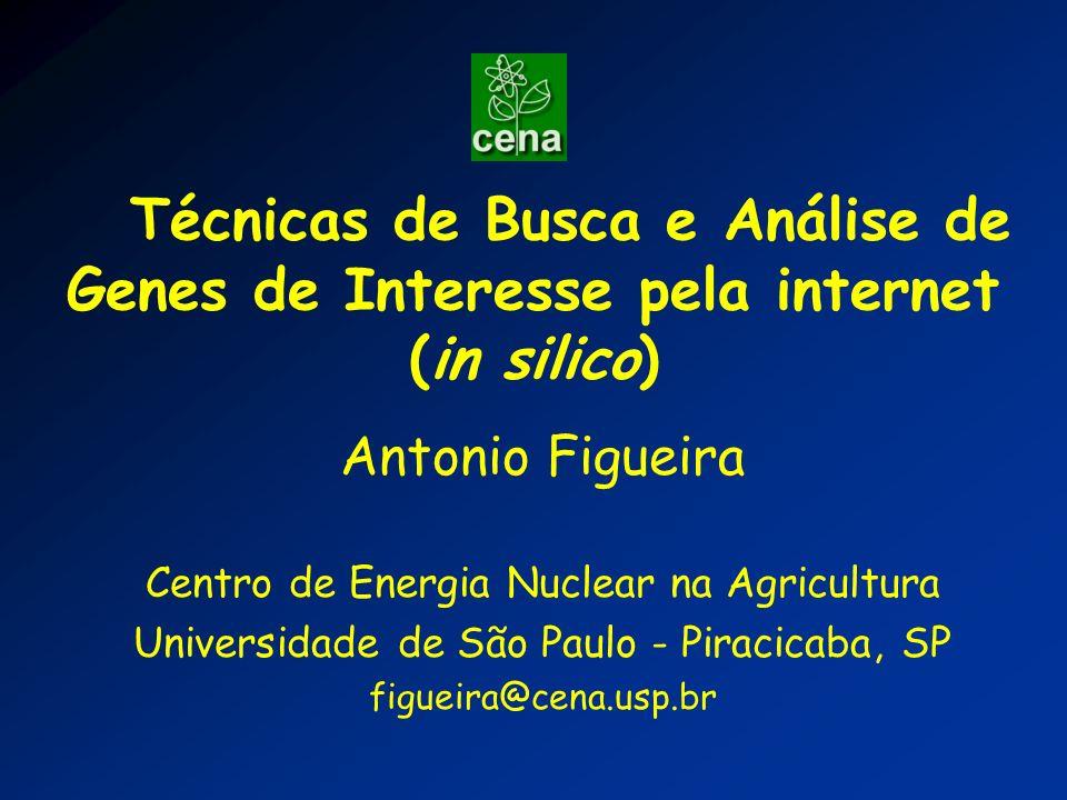 Técnicas de Busca e Análise de Genes de Interesse pela internet (in silico)