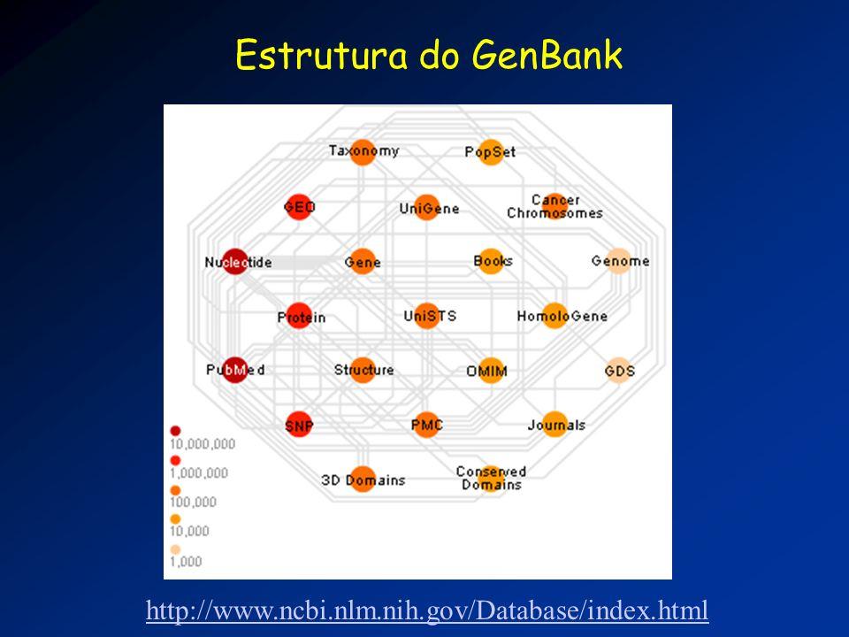 Estrutura do GenBank http://www.ncbi.nlm.nih.gov/Database/index.html