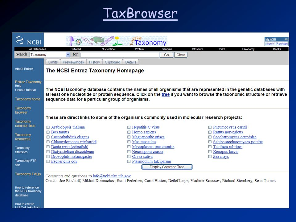 TaxBrowser