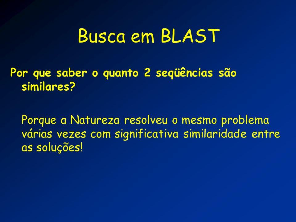 Busca em BLAST Por que saber o quanto 2 seqüências são similares